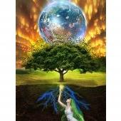 Simbologia: L'albero della vita