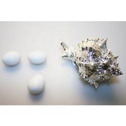 Conchiglia murex in argento - Argenesi