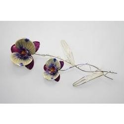 Bomboniera orchidea
