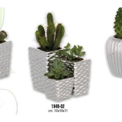 Trittico Vasetti portapiante con piante naturali