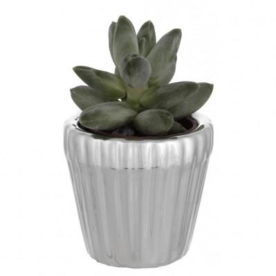 Porta vaso in resina argentata con piantina grassa