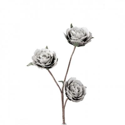 Rosa Ramificata