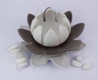 Lotus Grande Bicolor Claraluna -  bomboniera matrimonio / Comunione 2016