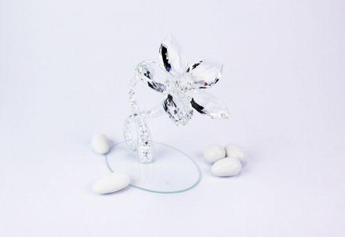 Piantina fiore in cristallo nozze