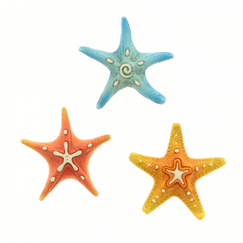 Magnete stella marina - tema mare